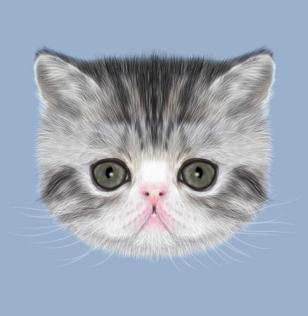 stipes: Illustrated Portrait of black tabby kitten on blue background Stock Photo