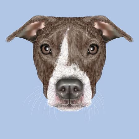 dog ears: Illustrated portrait of Dog on blue background