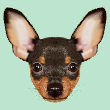 Geïllustreerde Portret van kleine hond op groene achtergrond
