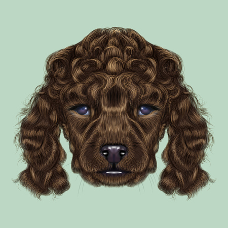 Illustrated portrait of brown dog on blue background.
