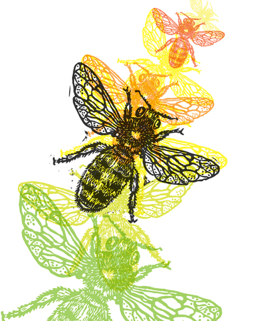 Linocut honeybee in flight in different colors on white background Illustration