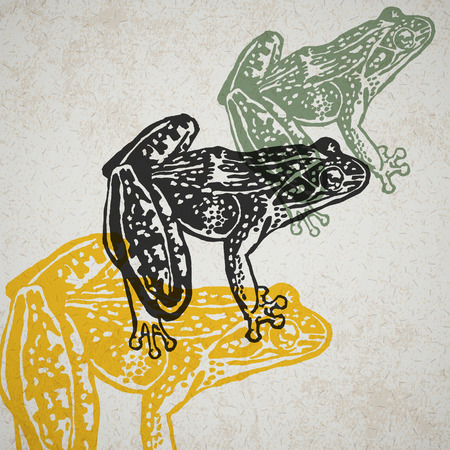 Engraved Frogs in different colors on old paper