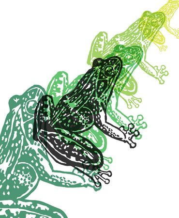 Engraved Frogs in different colors on white background Illustration