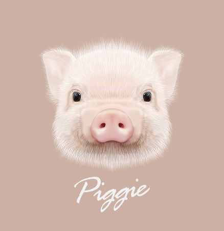 pigling: Cute head of little Piggy on tan background.
