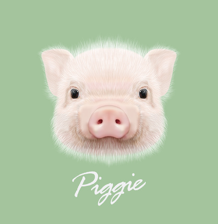 Cute head of little Piggy on green background. Illustration