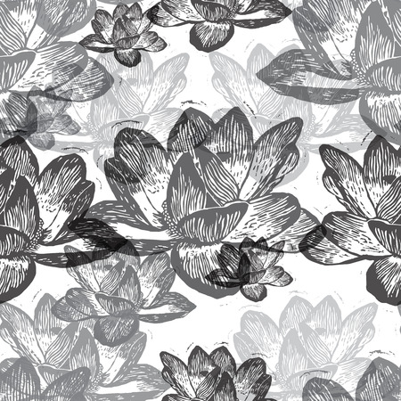 nenuphar: Black engraved water lily flowers on white background Illustration