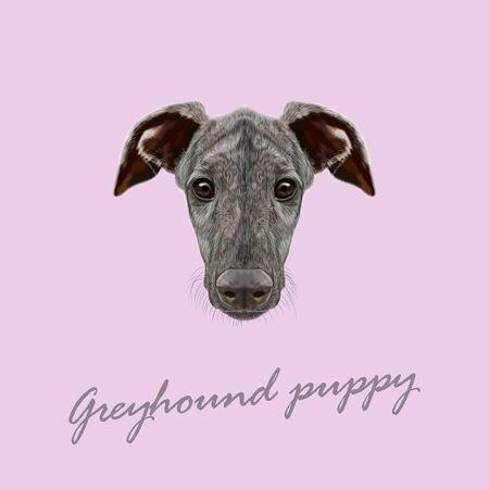 brindle: Cute face of dark brindle domestic dog on pink background Illustration
