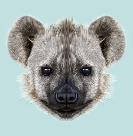 hyena: The cute face of African Hyena on blue background. Stock Photo