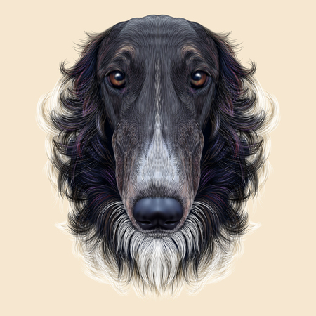 afghan hound: Cute face of black greyhound domestic dog ob yellow background.