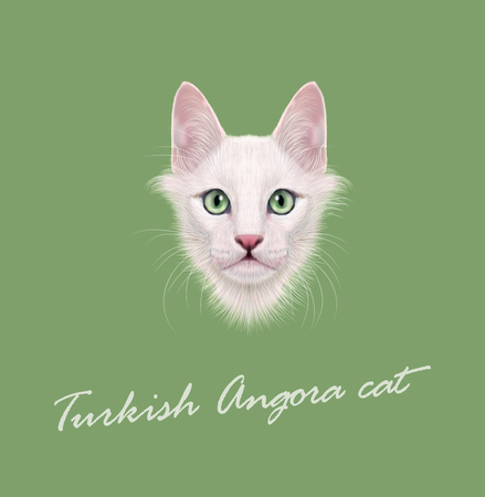 green eyes: Cute face of white domestic cat with green eyes on green background.