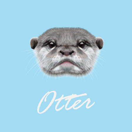 sea otter: Cute face of  aquatic Otter on blue background.