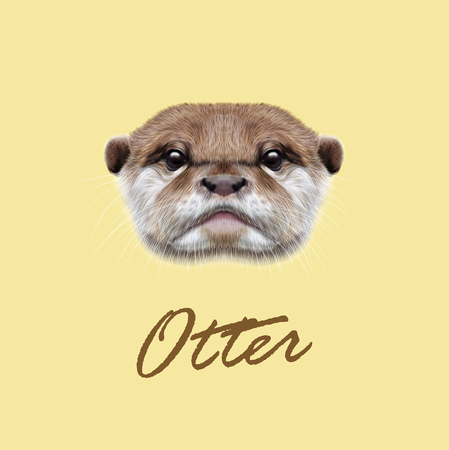 Cute face of  aquatic Otter on yellow background.