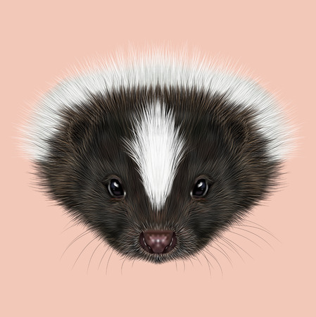 odors: Cute face of Striped skunk on pink background.
