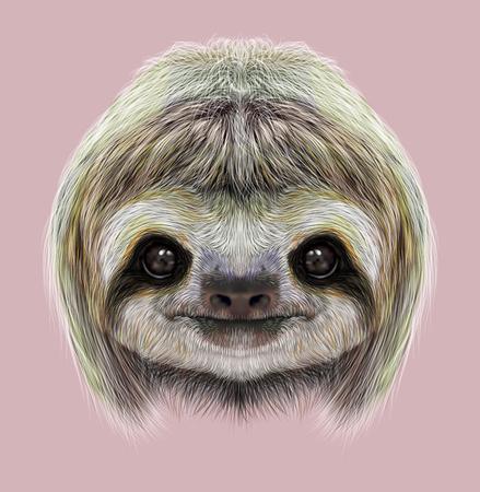 oso perezoso: Cara linda del tropical perezoso de tres dedos en el fondo de color rosa.