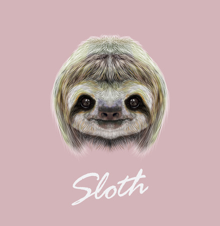 Cute face of tropical Three-toed Sloth on pink background. 免版税图像 - 54946760