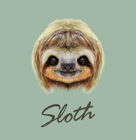 Cute face of tropical Three-toed Sloth on green background. Imagens - 54946764