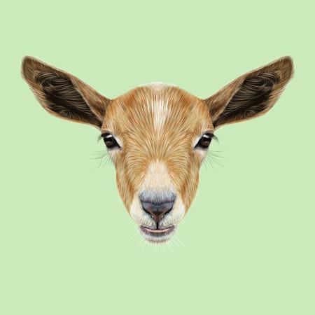 Cute face of beige Goat on green background. Banco de Imagens