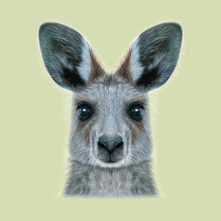 mammal: Cute head of wild Australian mammal on beige background.