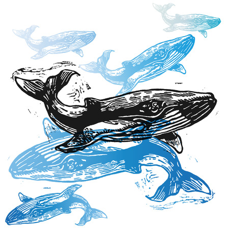 cachalot: Vector Whale animals in abstract composition. Linocut whales in different colours on the white background