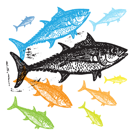 ichthyology: Vector Tuna fishes in abstract composition. Linocut fishes in different colors on white background