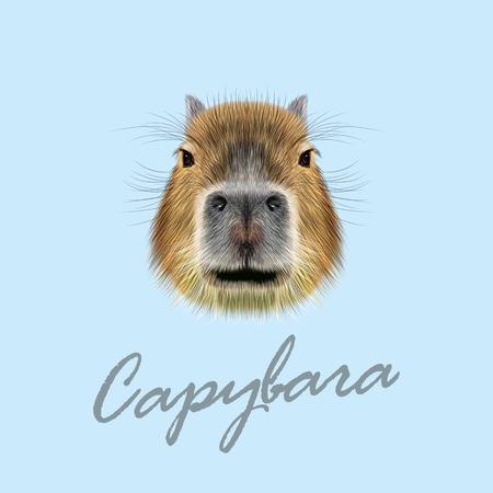 Illustrated Portrait of Capybara. Cute face of wild Capybara on blue background.