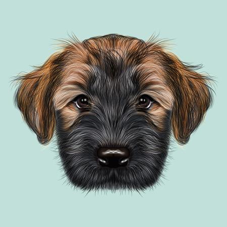 イラスト肖像画のブリアール子犬。青の背景にふわふわした犬のかわいい顔 写真素材