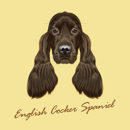 setter: Vector Illustrated portrait of Gordon Setter dog. Cute face of hunting breed of dog on yellow background.