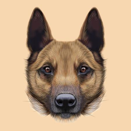 Illustrated Portrait of Malinois dog. Cute face of Shepherd dog on beige background.