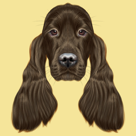 setter: Illustrated portrait of Gordon Setter dog. Cute face of hunting breed of dog on yellow background. Stock Photo