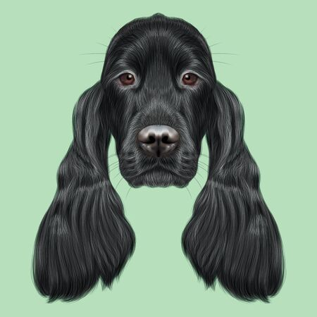 setter: Illustrated portrait of Gordon Setter dog. Cute face of hunting breed of dog on green background.