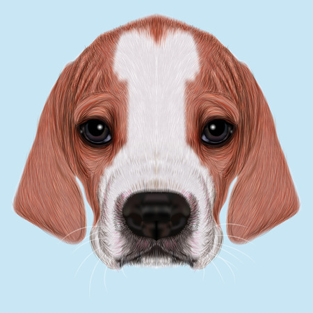 cute puppy: Illustrated Portrait of English Pointer puppy. Cute bicolor short hair domestic dog on blue background. Stock Photo