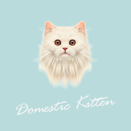 fluffy: Vector Illustrated portrait of Domestic cat. Cute white fluffy face of kitten on blue background.