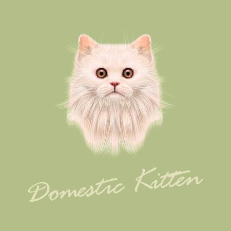 Vector Illustrated portrait de chat domestique. Mignon visage blanc duveteux du chaton sur fond vert.