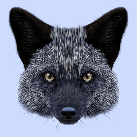 Geïllustreerde portret van zilveren vos. Leuk achtergezicht van vos op blauwe achtergrond.