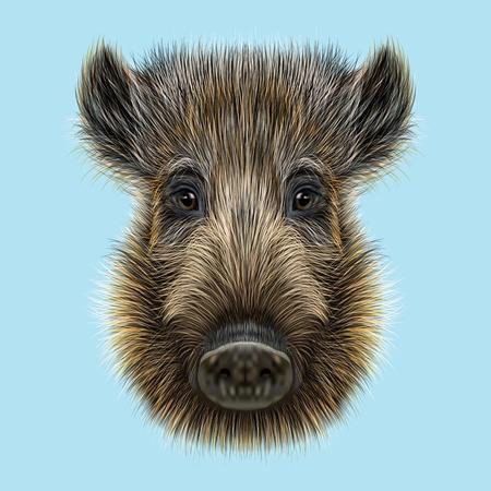 Geïllustreerde van wilde zwijnen. Formidable gezicht van wild varken op een blauwe achtergrond.