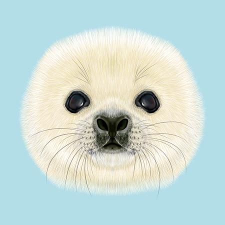 Illustrated Porträt Harp Seal Pup. Niedliches flaumiges Gesicht des Harfen-Siegel-Baby auf blauem Hintergrund.