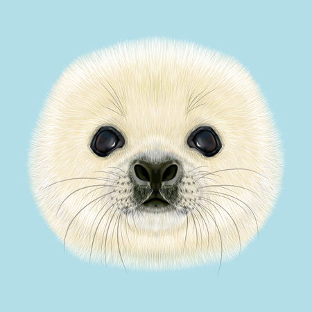 Illustrated Portrait of Harp Seal Pup. Cute fluffy face of Harp Seal baby on blue background. Фото со стока