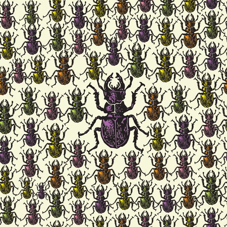 entomological: Vector illustrated seamless stag-beetle pattern. Colorful engraved stag-beetle on beige background. Seamless vector pattern with colored bugs Illustration