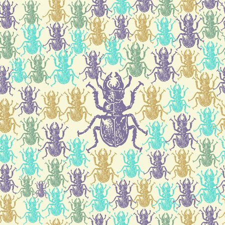 entomological: Vector illustrated seamless stag-beetle pattern. Colorful engraved stag-beetle on white background Illustration