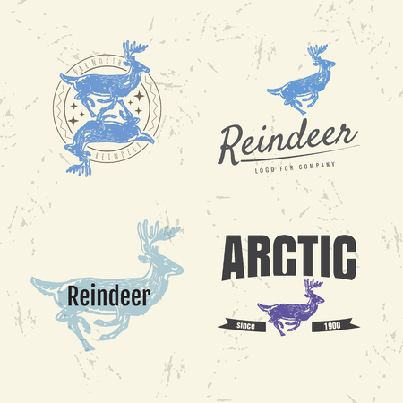 tundra: Vector colorful set with reindeer.