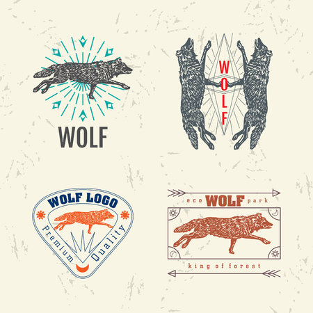Vector colorful set with forest wolf.