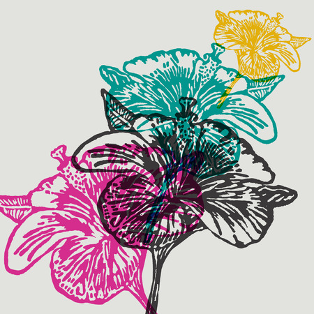 linocut: Linocut Hibiscus Flower on background. Vector Illustrated Hibiscus Flowers.