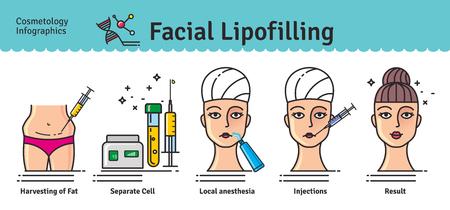 Vector conjunto ilustrado con lipofilling facial cosmetología. Infografía con los iconos de los procedimientos cosméticos médicos.