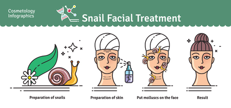 rejuvenation: Vector Illustrated set with salon snail facial treatment. Infographics with icons of cosmetic procedures for face skin.