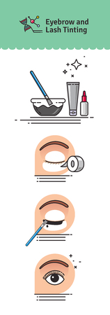 Vector Illustrated set with salon Brow and Eyelash Tints. Infographics with icons of cosmetic procedures for eyelash. Stock Photo
