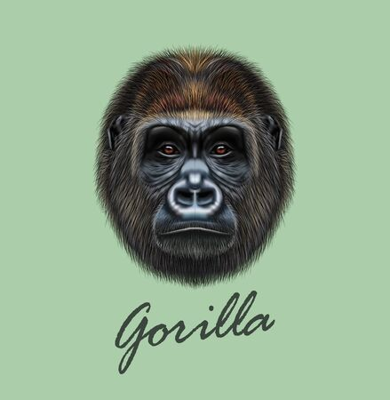 Vector Illustrated portrait of Gorilla male