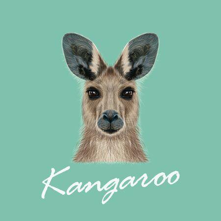 Vector Illustrated portrait of Kangaroo