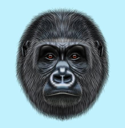 Geïllustreerd portret van Gorilla-mannetje. Leuk hoofd van wilde aap op blauwe achtergrond.