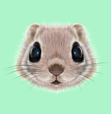 Illustrated portrait of Flying squirrel. Cute head of wild mammal on green background.