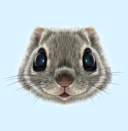 Illustrated portrait of Flying squirrel. Cute head of wild mammal on blue background.